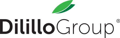 Dilillo Group - I sapori di una volta